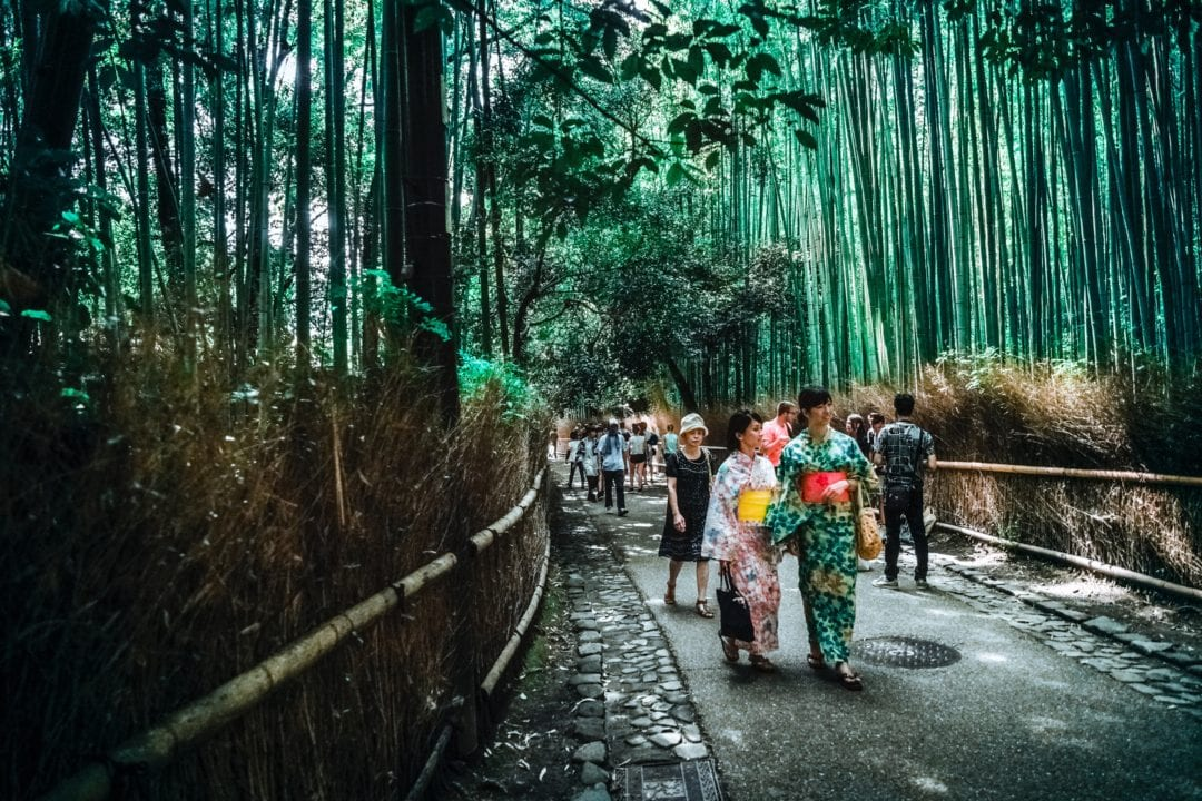 Japanese Culture Before You Go