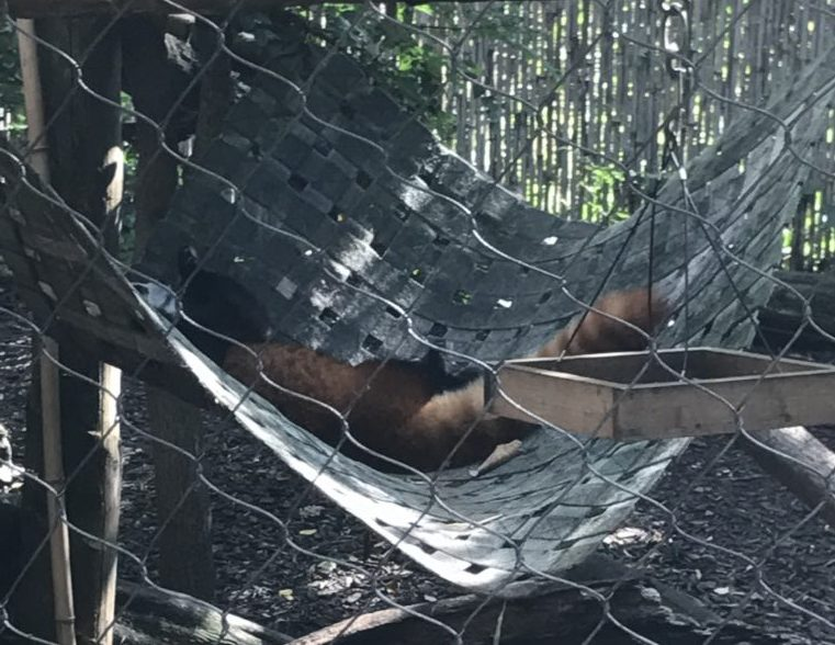 Philadelphia Zoo exhibits
