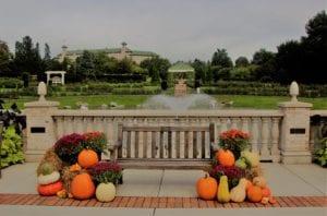 Swan Lake at Hershey Gardens