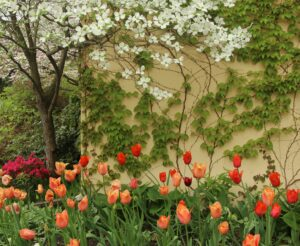 The Settlers Inn gardens bloom continuously spring summer and fall