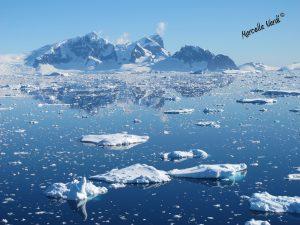 Antarctica Adventures