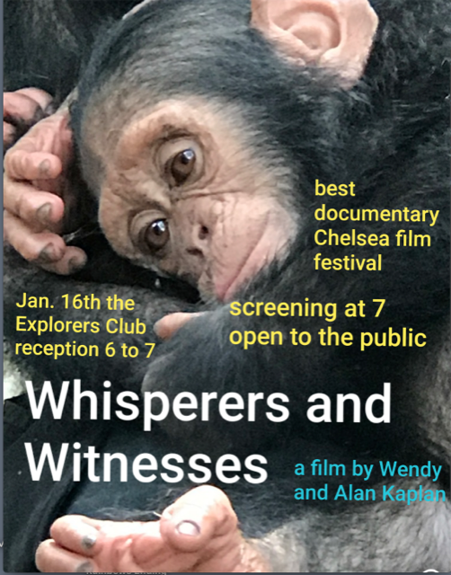 Wendy Kaplan Whisperers and Witnesses